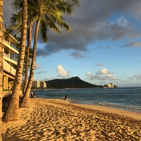 Journey to 2021 Honolulu Marathon