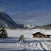 2019 Winter In Yellowstone National Park
